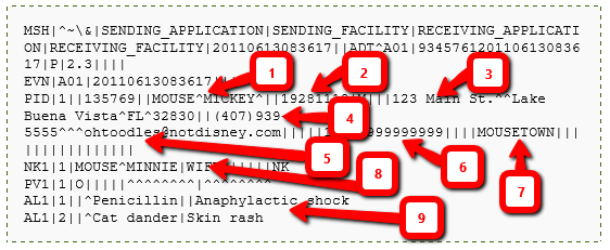Hacking Hl7 Data Interfaces In Medical Environments